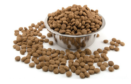dog food for pitbull